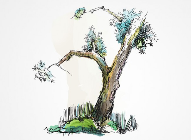 free-doodled-trees-brush-set-0424
