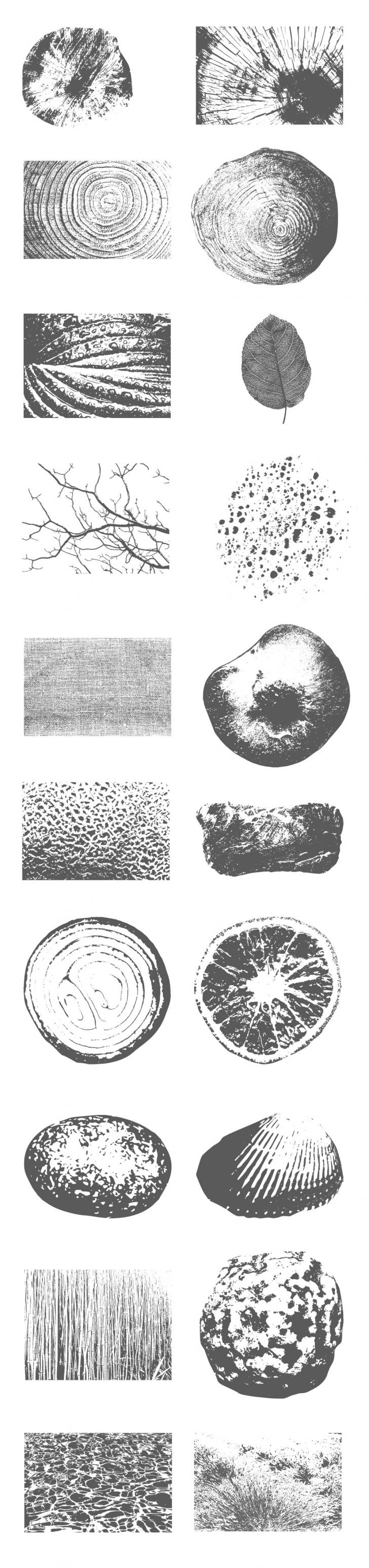 木や木の葉、貝殻など自然模様のテクスチャ素材 - Organic Vector Textures(PSD)